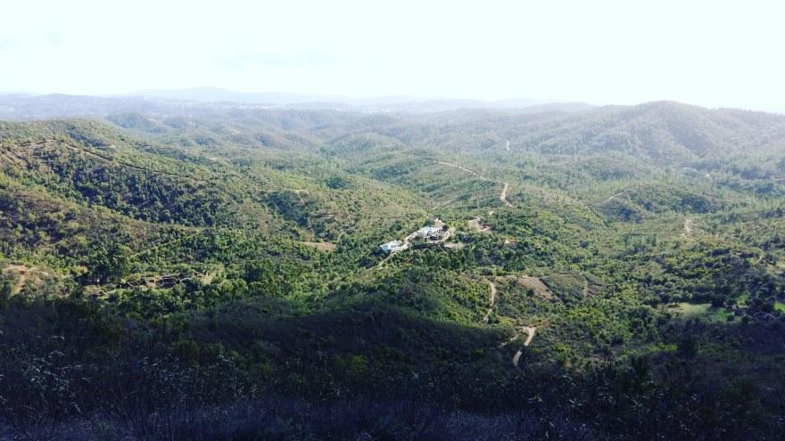 Wild View Retreat Wide